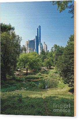 Central Park Ny Wood Print
