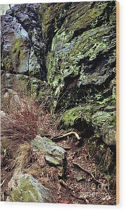 Central Park Rock Formation Wood Print