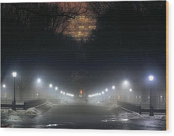 Central Park Shadows Wood Print by JC Findley