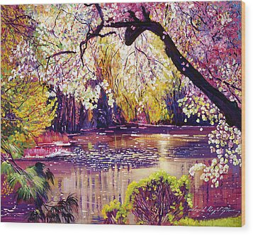 Central Park Spring Pond Wood Print by David Lloyd Glover