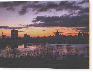 Central Park Sunrise Wood Print by Ariane Moshayedi