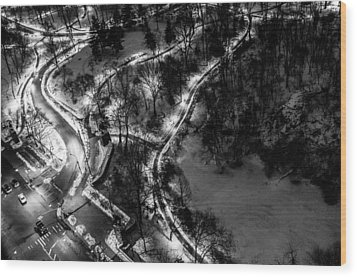 Wood Print featuring the photograph Central Park Trails by M G Whittingham