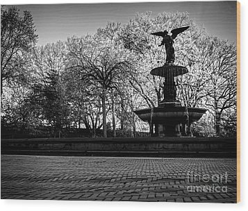 Central Park's Bethesda Fountain - Bw Wood Print by James Aiken