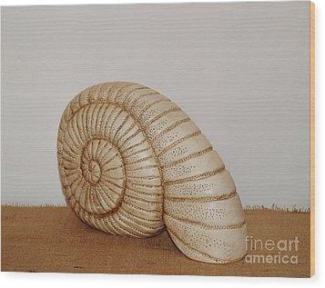 Ceramics Wood Print