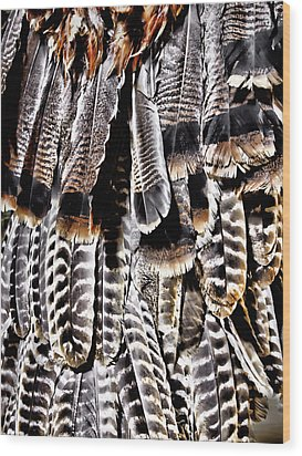 Ceremonial Feathers Wood Print by Ann Powell