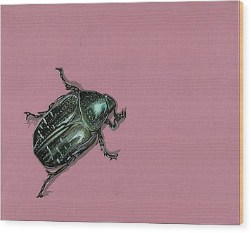 Chaf Beetle Wood Print