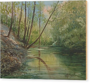 Chagrin River In Spring Wood Print
