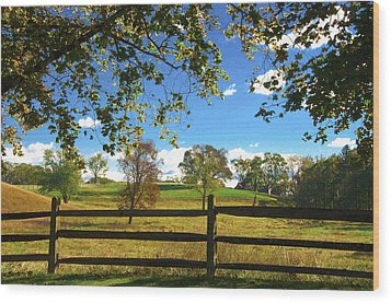 Changing Seasons Wood Print by Bill Cannon