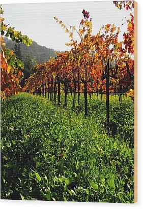 Changing Vines Wood Print