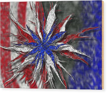 Chaotic Star Project - Take 3 Wood Print by Scott Hovind