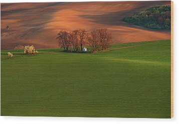 Wood Print featuring the photograph Chapel St Barbara. Moravia by Jenny Rainbow