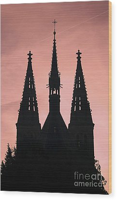 Chapter Church Of St Peter And Paul Wood Print by Michal Boubin