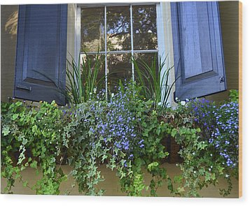 Charleston Flower Box 3 Wood Print