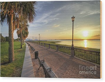 Charleston Sc Waterfront Park Sunrise  Wood Print by Dustin K Ryan