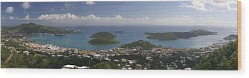 Charlotte Amalie From Above Wood Print by Gary Lobdell