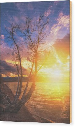 Wood Print featuring the photograph Chatfield Lake Sunset by Darren White