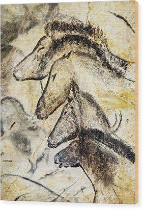 Chauvet Horses Wood Print