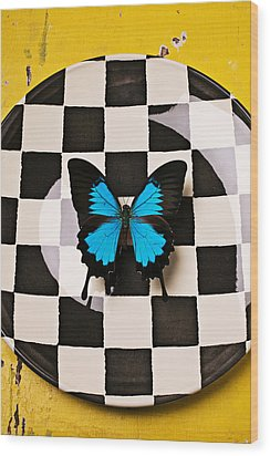 Checker Plate And Blue Butterfly Wood Print by Garry Gay
