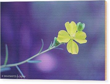 Cheer Up Buttercup Wood Print by Stefanie Silva