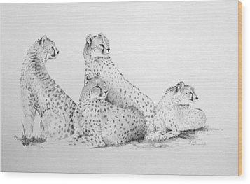 Cheetah Group Wood Print by Alan Pickersgill
