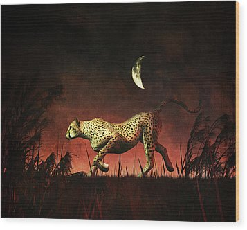 Cheetah Hunting During The African Night Wood Print