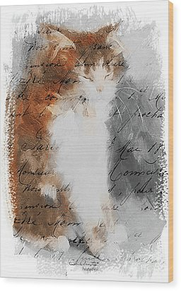 Cher Chat ... Wood Print