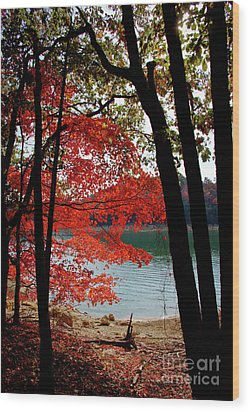 Wood Print featuring the photograph Cherokee Lake Color by Douglas Stucky