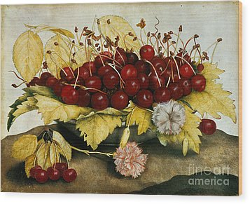 Cherries And Carnations Wood Print by Giovanna Garzoni