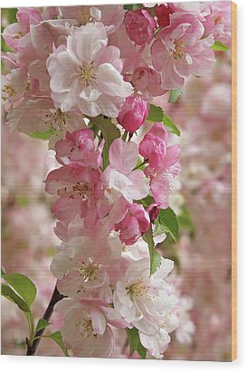 Wood Print featuring the photograph Cherry Blossom Closeup Vertical by Gill Billington