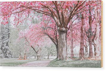 Wood Print featuring the photograph Cherry Blossom Path by Charline Xia