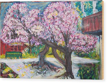 Cherry Blossom Time Wood Print by Carolyn Donnell