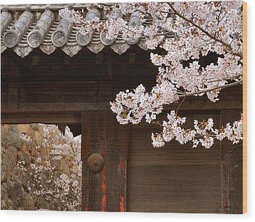 Cherry Blossoms Wood Print by Joe Bonita