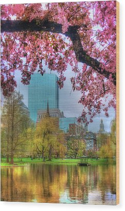 Wood Print featuring the photograph Cherry Blossoms Over Boston by Joann Vitali