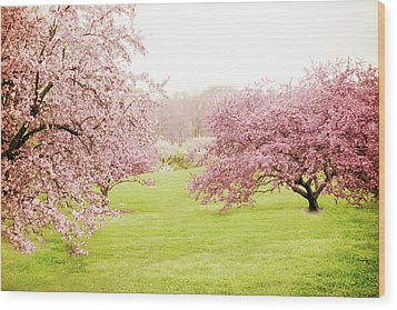 Wood Print featuring the photograph Cherry Confection by Jessica Jenney