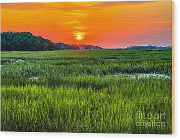 Cherry Grove Marsh Sunrise Wood Print