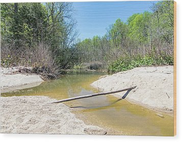 Wood Print featuring the photograph Chesapeake Tributary by Charles Kraus