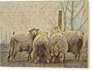Chester County Sheep Wood Print