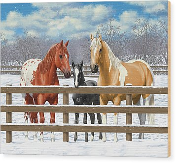 Chestnut Appaloosa Palomino Pinto Black Foal Horses In Snow Wood Print by Crista Forest