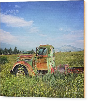 Chevy In A Field Wood Print by Terry Rowe
