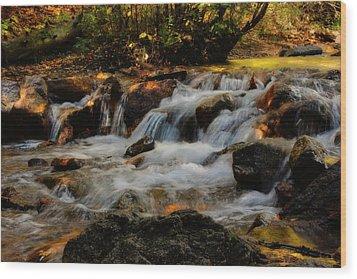 Wood Print featuring the photograph Cheyenne Canyon Autumn by Ellen Heaverlo