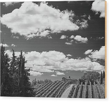 Chianti Vineyards Wood Print by Richard Goodrich