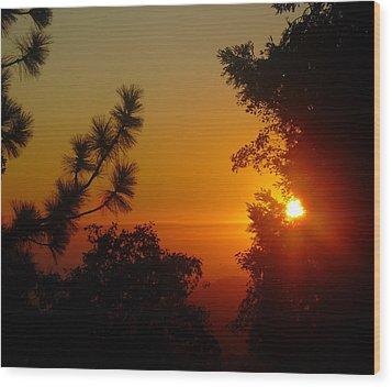 Chiaronaturo V Wood Print by Kristen R Kennedy