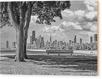 Wood Print featuring the photograph Chicago North Skyline Park Black And White by Christopher Arndt