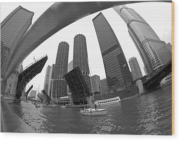 Chicago Sailboats Heading To Harbor Wood Print by Sven Brogren