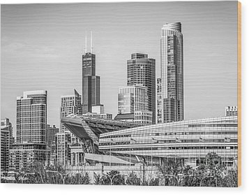 Chicago Skyline With Soldier Field And Willis Tower  Wood Print