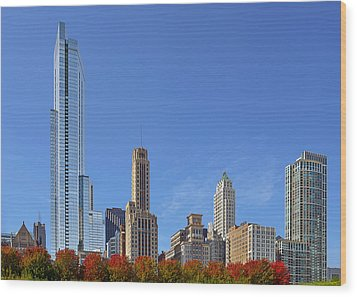 Chicago The Beautiful Wood Print by Christine Till