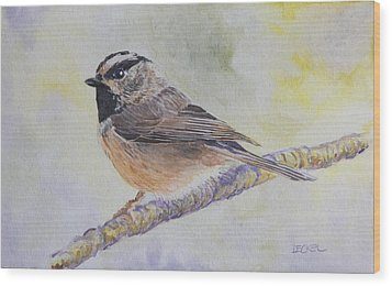 Wood Print featuring the painting Chickadee 2 by Robert Decker