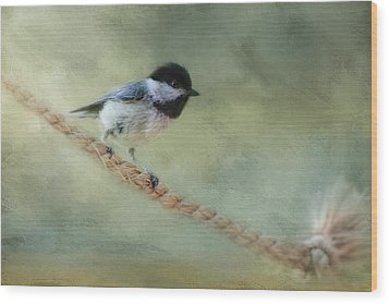 Chickadee At The Shore Wood Print by Jai Johnson