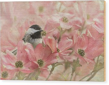 Wood Print featuring the photograph Chickadee In The Dogwood by Angie Vogel