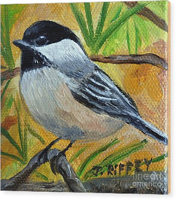 Chickadee In The Pines - Birds Wood Print